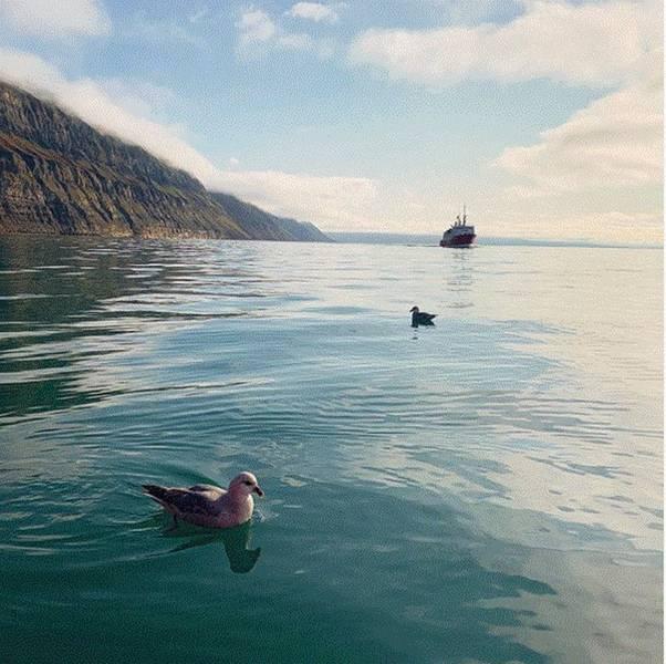 Longyearbyen ist die größte Stadt in Spitzbergen und wird möglicherweise einer der ersten Großverbraucher von grünem Wasserstoff oder Ammoniak aus Windparks in der Finnmark. Fotokredit Besuchen Sie Spitzbergen.