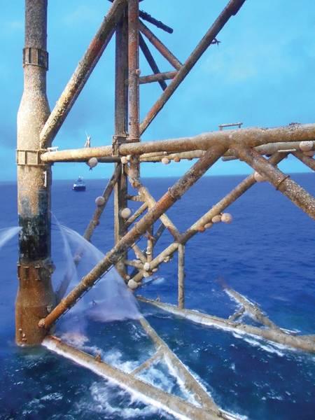 Uma maruca comum, Molva molva, nada entre um habitat semelhante a um recife de coral criado pela infraestrutura de petróleo e gás. Imagem do Insite.
