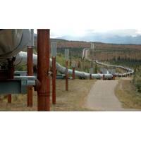 File Image: The Trans Alaska Pipeline. (CREDIT: AdobeStock / (c) Roger Asbury)