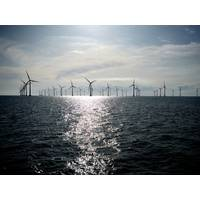 A typical offshore wind farm (CREDIT: Siemens)
