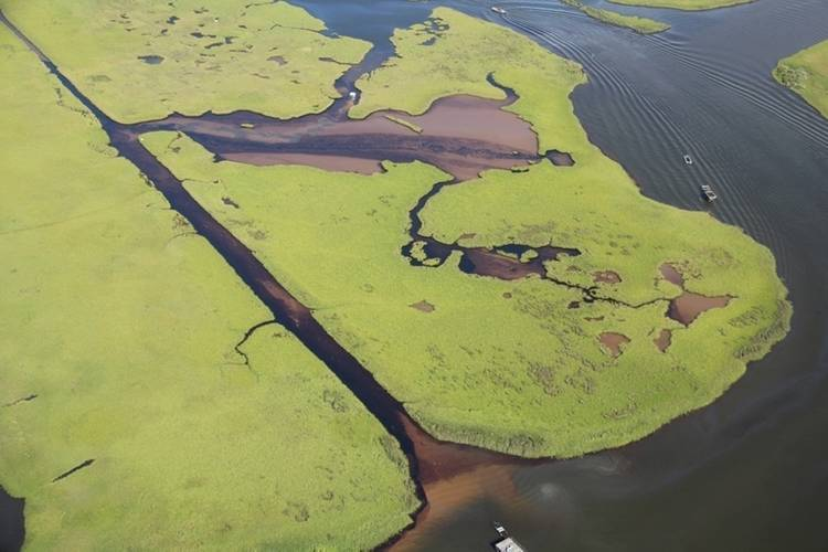 Approximately eight square miles was effected by the estimated 4,200 gallons of crude reportedly released by Hilcorp Energy near Lake Grande Ecaille, July 25, 2016. (U.S. Coast Guard photo courtesy of Hilcorp Energy)