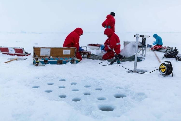 German scientists from the area of biogeochemistry from the Alfred Wegener Institute at work. On a small area on which they drill through the ice with a hollow borer, they take ice cores and sawed them into short pieces, representing the layers of the ice surface to the bottom. These migrate well documented in bags and are analyzed on the ship by different groups. After thawing, a core is filtered to determine the amount of ice algae, for example. (Photo: Stefan Hendricks/ AWI)